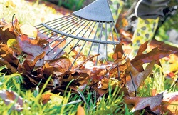 leaf clearing by oakwood gardening services